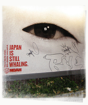 Against Japanese Whaling