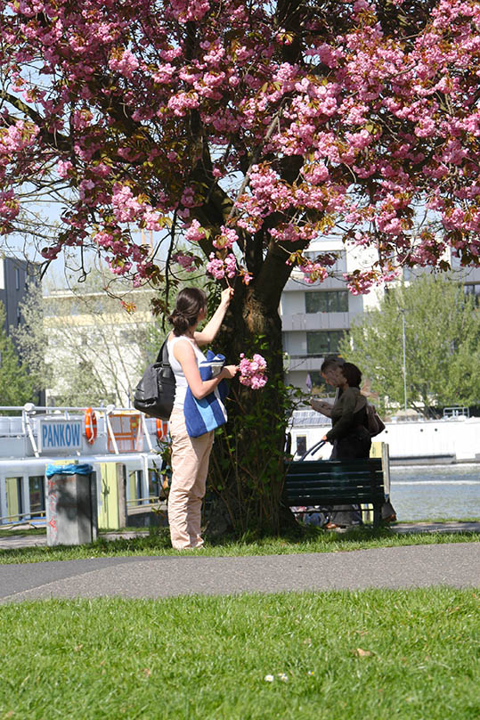 Treptower Park is for everyone. - <em>by SL Wong</em>