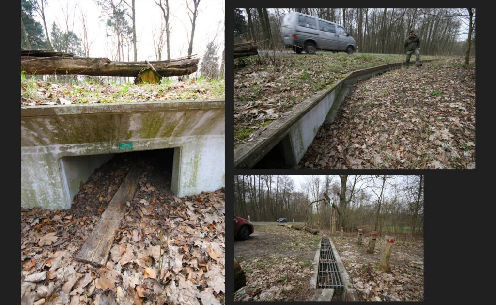 <em>Clockwise from left</em>: The ultimate solution to roadkill is the animal bypass or tunnel, which runs underneath roads. A split level directs amphibians and other creatures to the tunnel. Likewise with grating that also enables humans to enjoy the protected area. - <em>by SL Wong</em>
